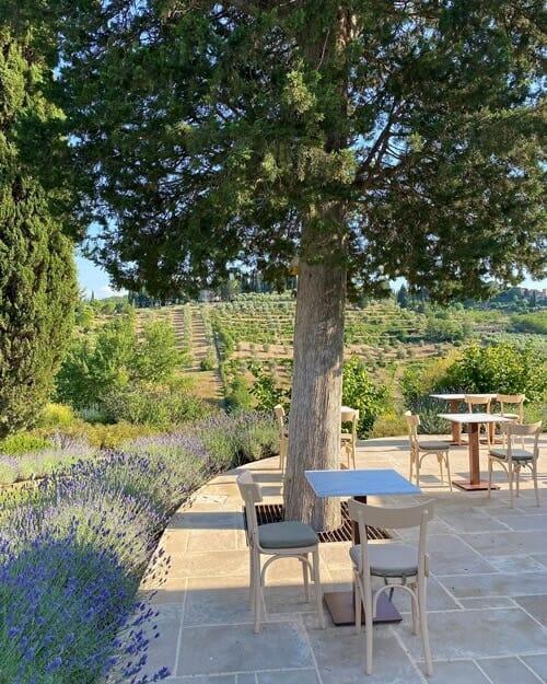 8 reasons why you should visit Tuscany, Italy 1